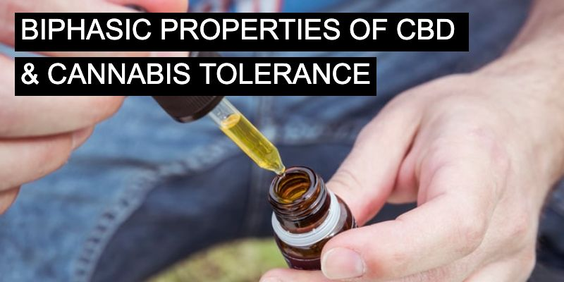 Understanding biphasic properties of cbd and cannabis tolerance
