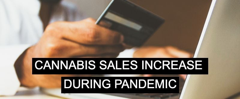 Cannabis sales increase during pandemic