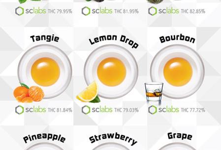 PureWax Flavors