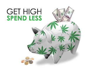 Get High and Spend Less - Shop vapes at Vapor